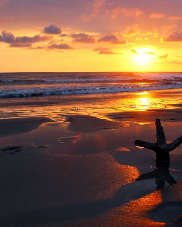 Kite Und Surfcamps Mit Perfect Tours. Surfcamps, Costa Rica, Nosara, Surfspot Playa Guiones (1)