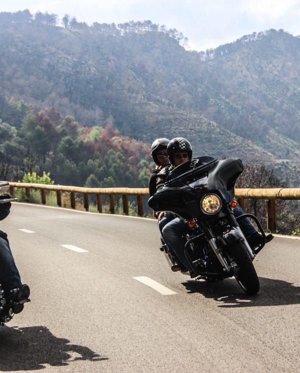 Mallorca Harley Reise Bike Week (22)