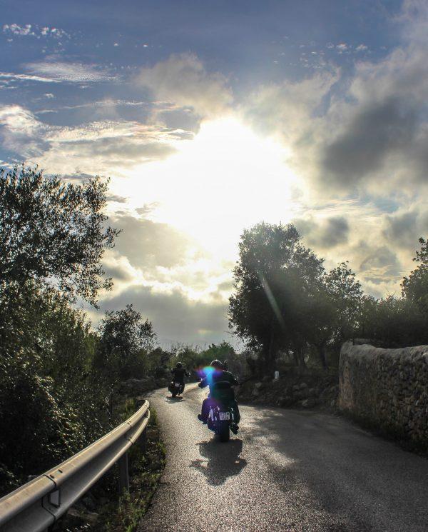 Mallorca Harley Reise Bike Week (34)