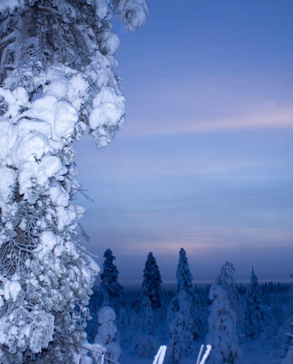 Perfect Tours Schneemobil Reise Finnland Norwegen Nordkap (1)
