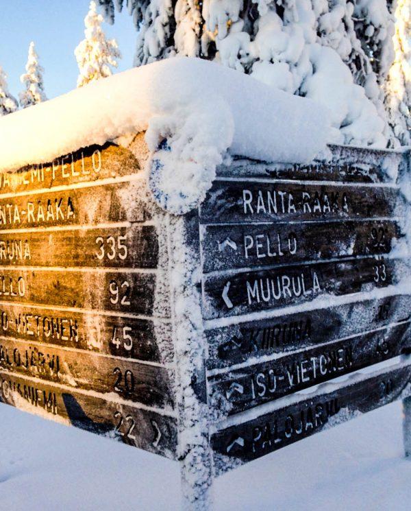 Schneemobi Reise Finnland By Perfect Tours (34)