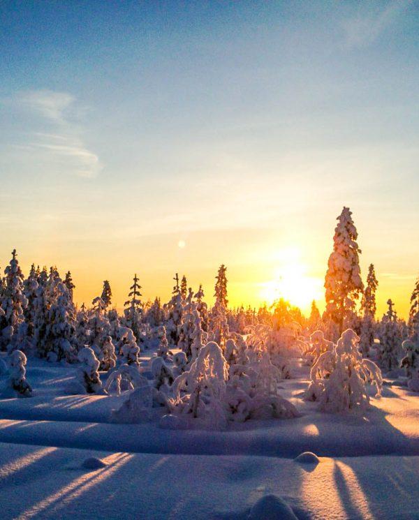 Schneemobi Reise Finnland By Perfect Tours (35)