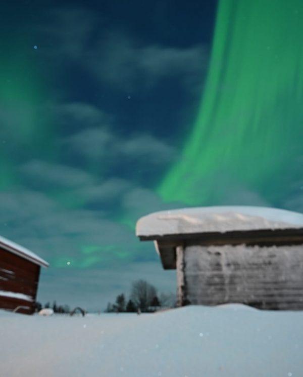 Schneemobil Reise Lappland Perfect Tours (108)