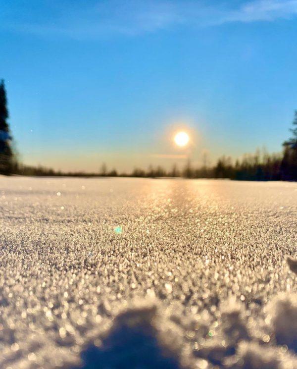 Schneemobil Reise Lappland Perfect Tours (44)