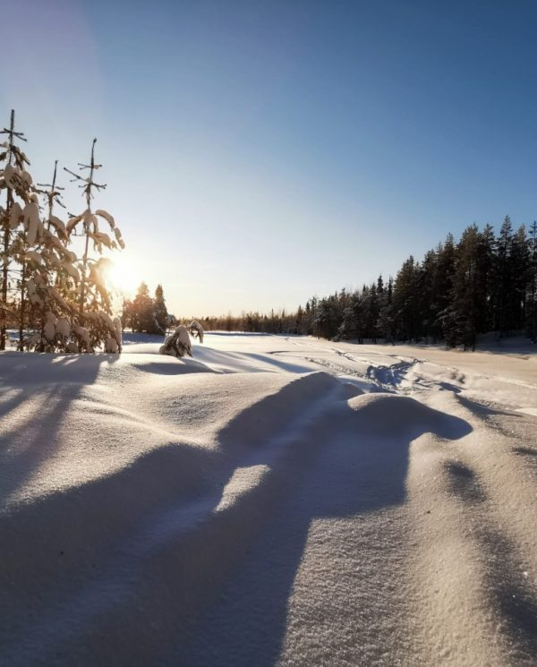 Schneemobil Reise Lappland Perfect Tours (55)