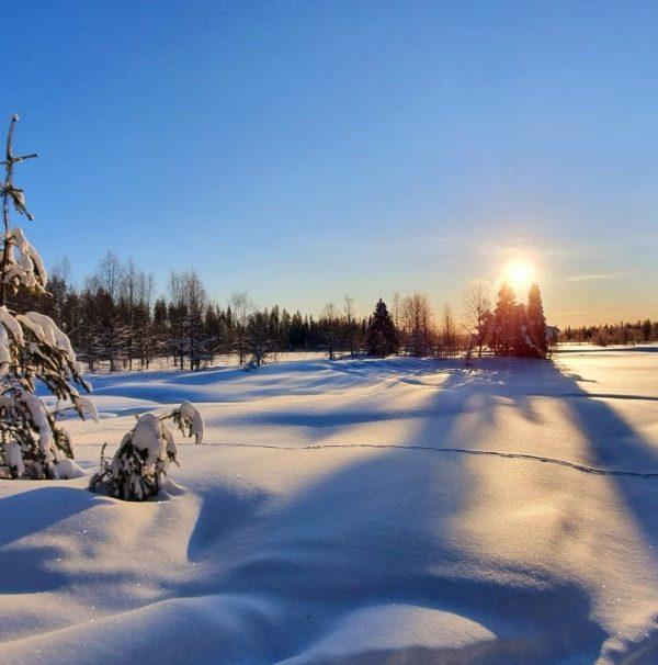 Schneemobil Reise Lappland Perfect Tours (65)