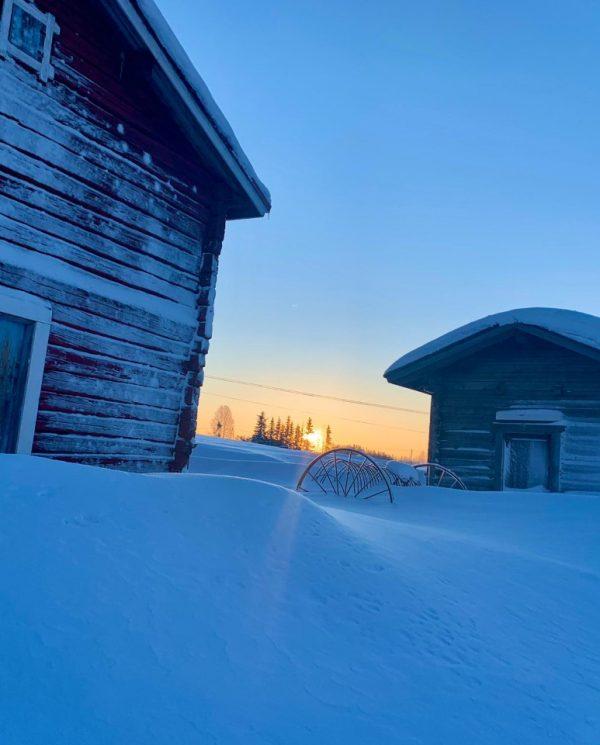 Schneemobil Reise Lappland Perfect Tours (67)