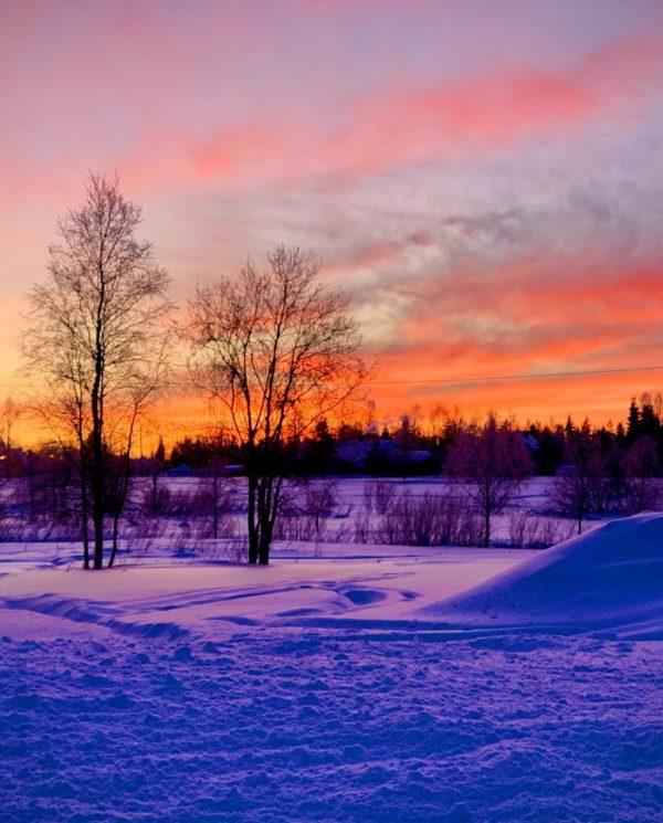 Schneemobil Reise Lappland Perfect Tours (70)