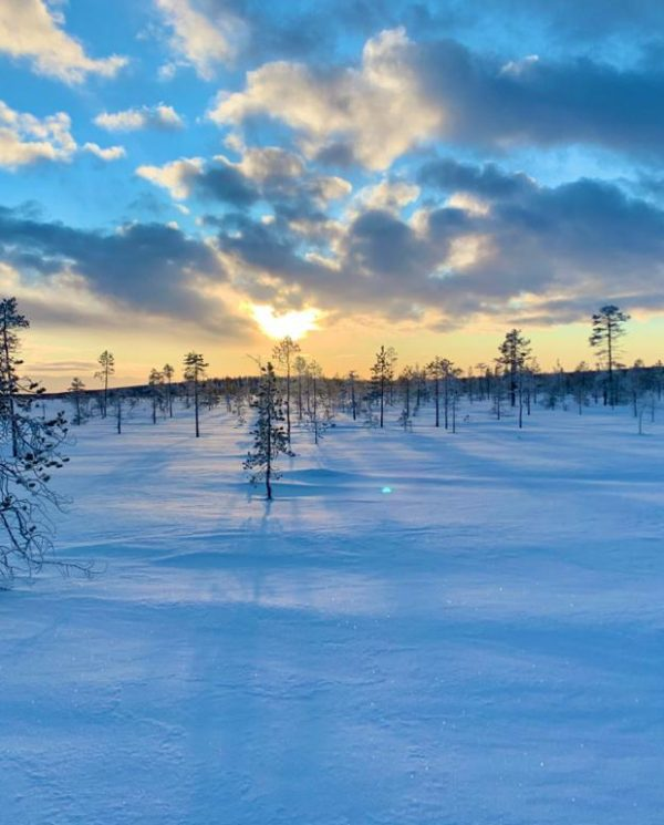 Schneemobil Reise Lappland Perfect Tours (74)