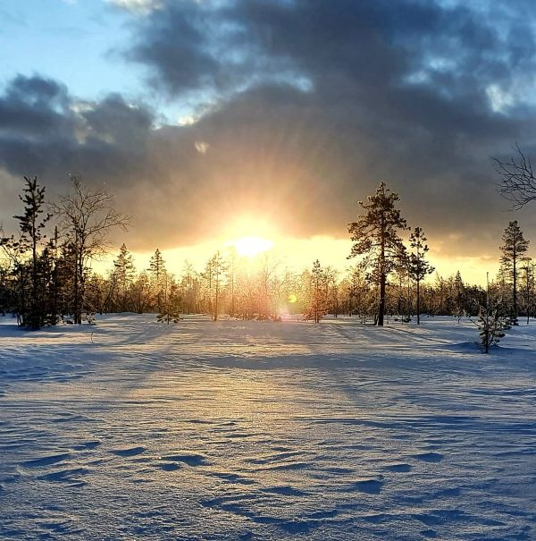 Schneemobil Reise Lappland Perfect Tours (84)