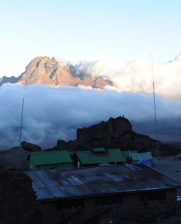 Trekking, Reise, Kilimanjaro, Perfect Tours 1 (10)