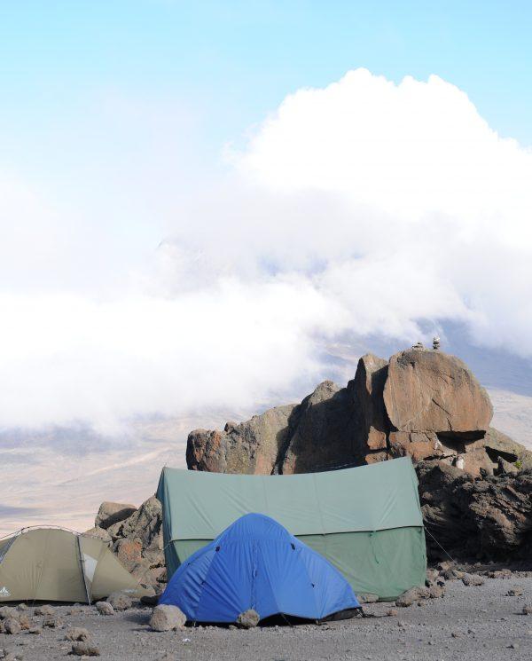 Trekking, Reise, Kilimanjaro, Perfect Tours 1 (11)