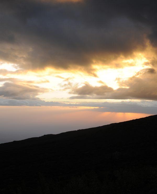 Trekking, Reise, Kilimanjaro, Perfect Tours 1 (14)