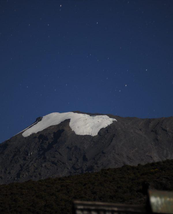 Trekking, Reise, Kilimanjaro, Perfect Tours 1 (21)
