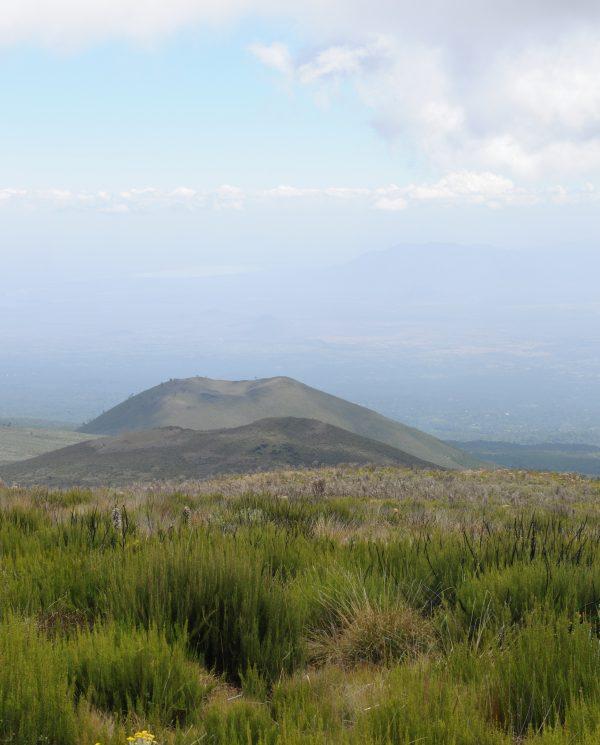 Trekking, Reise, Kilimanjaro, Perfect Tours 1 (25)