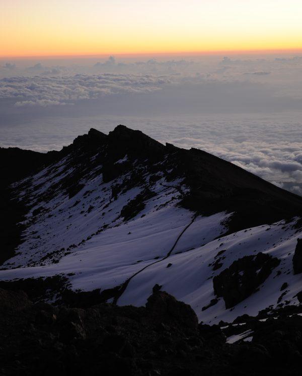 Trekking, Reise, Kilimanjaro, Perfect Tours 1 (9)